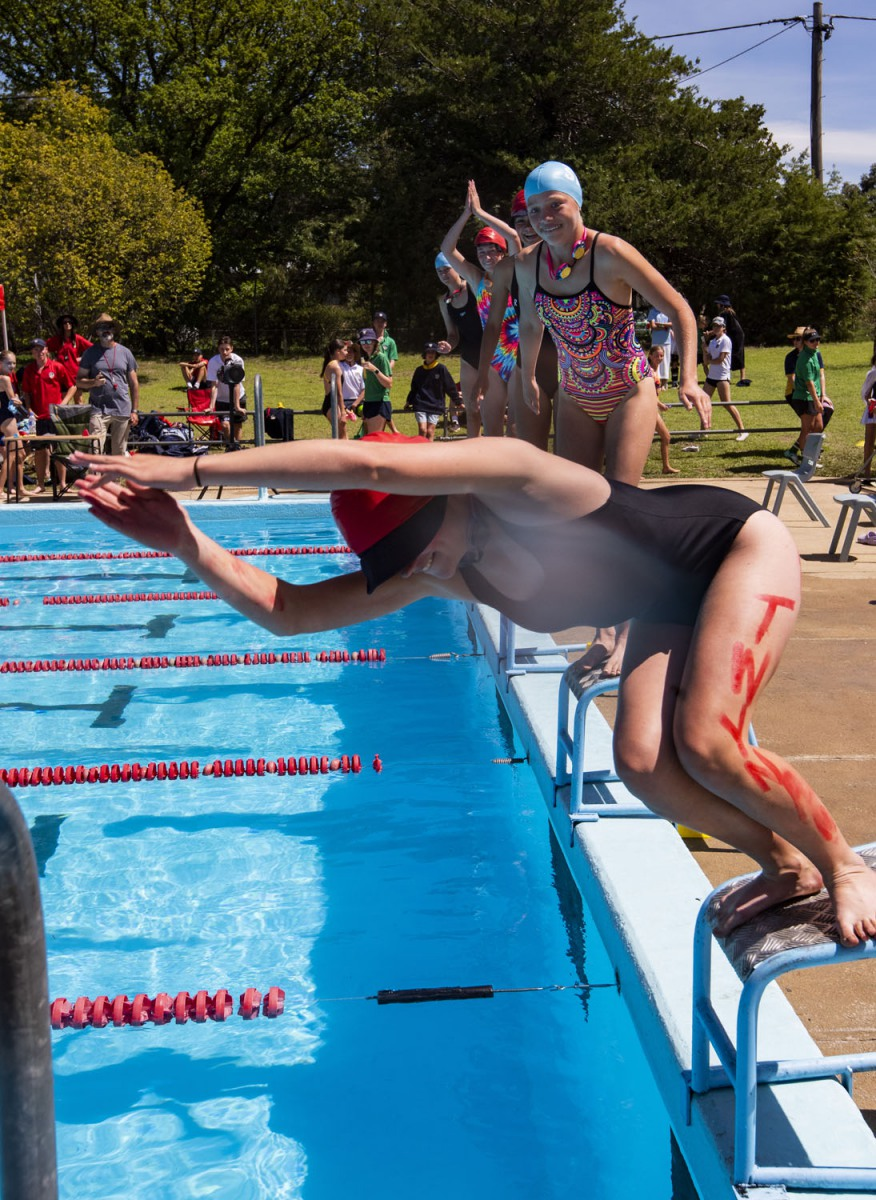 2020_SMGS_SwimCarnival_pool-action_390