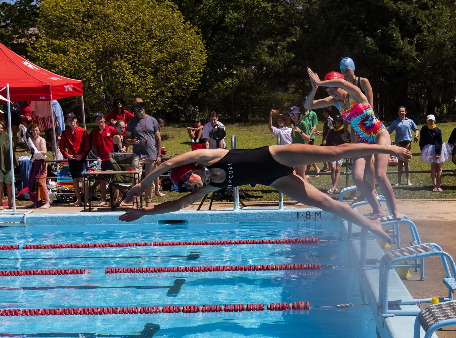 2020_SMGS_SwimCarnival_pool-action_391