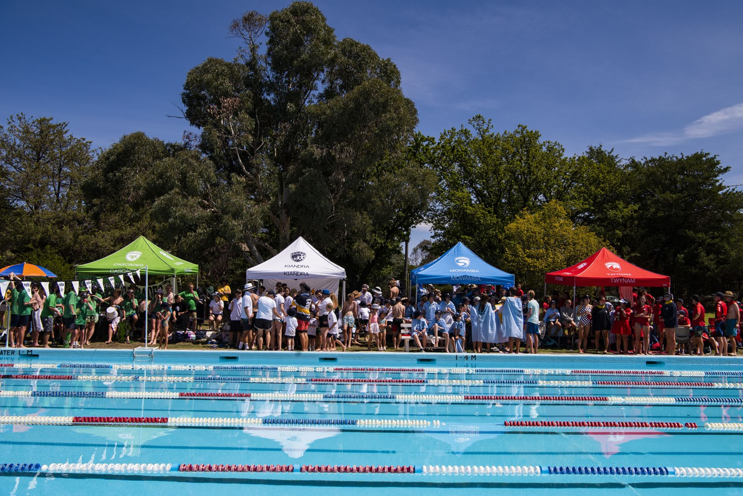 2020_SMGS_SwimCarnival_pool-action_394