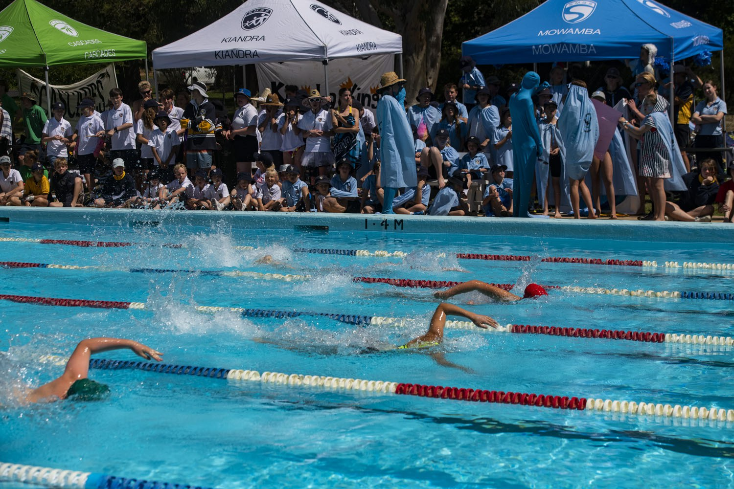 2020_SMGS_SwimCarnival_pool-action_396