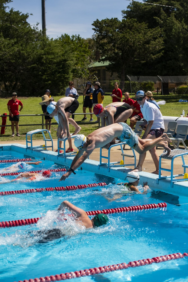 2020_SMGS_SwimCarnival_pool-action_397