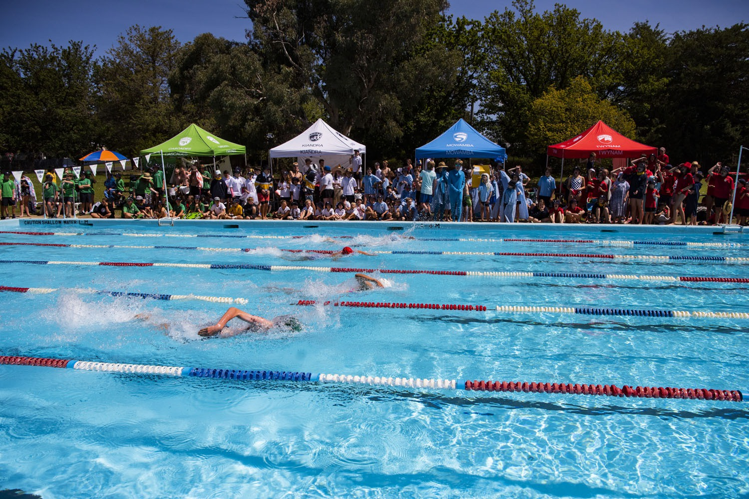 2020_SMGS_SwimCarnival_pool-action_402