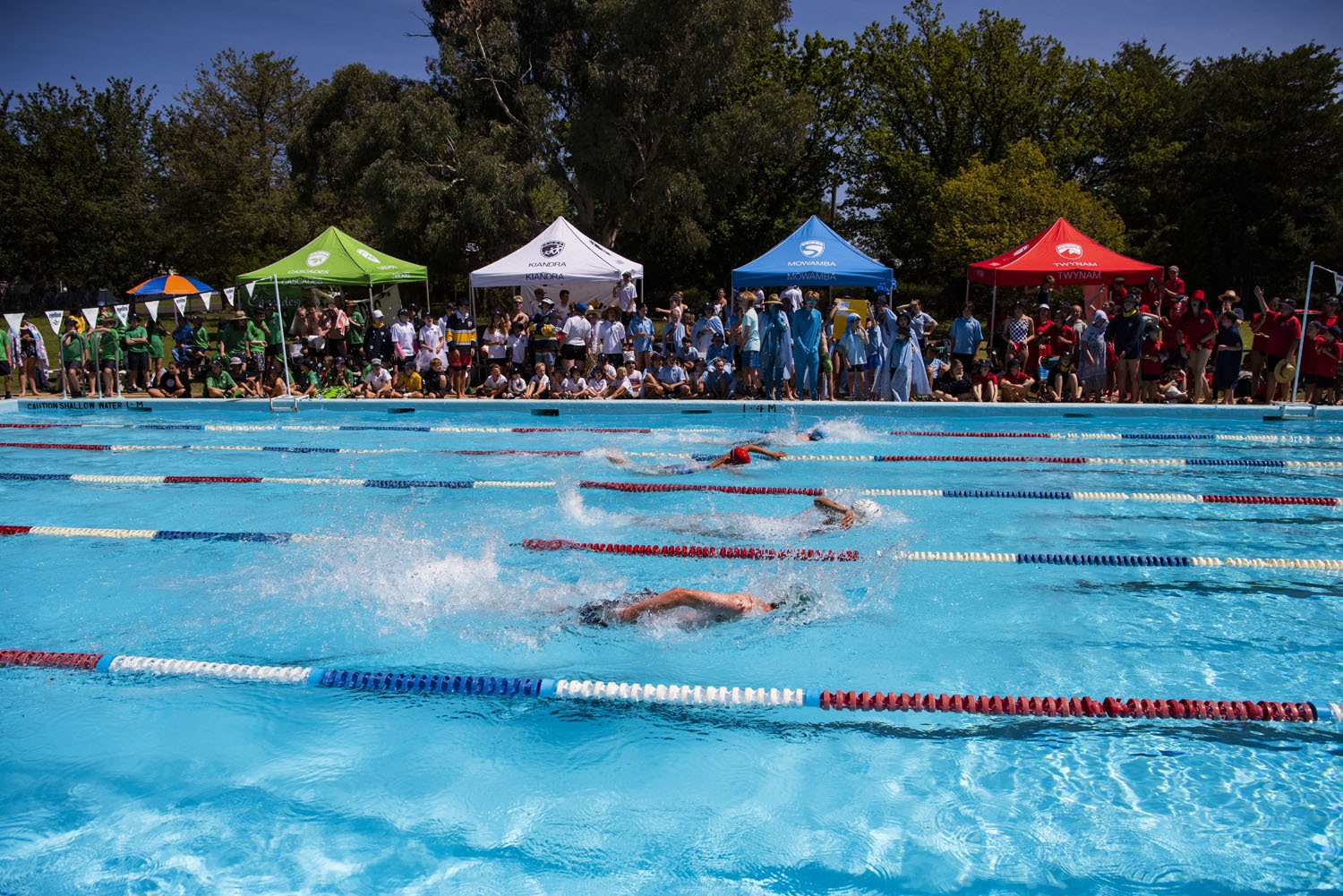 2020_SMGS_SwimCarnival_pool-action_403