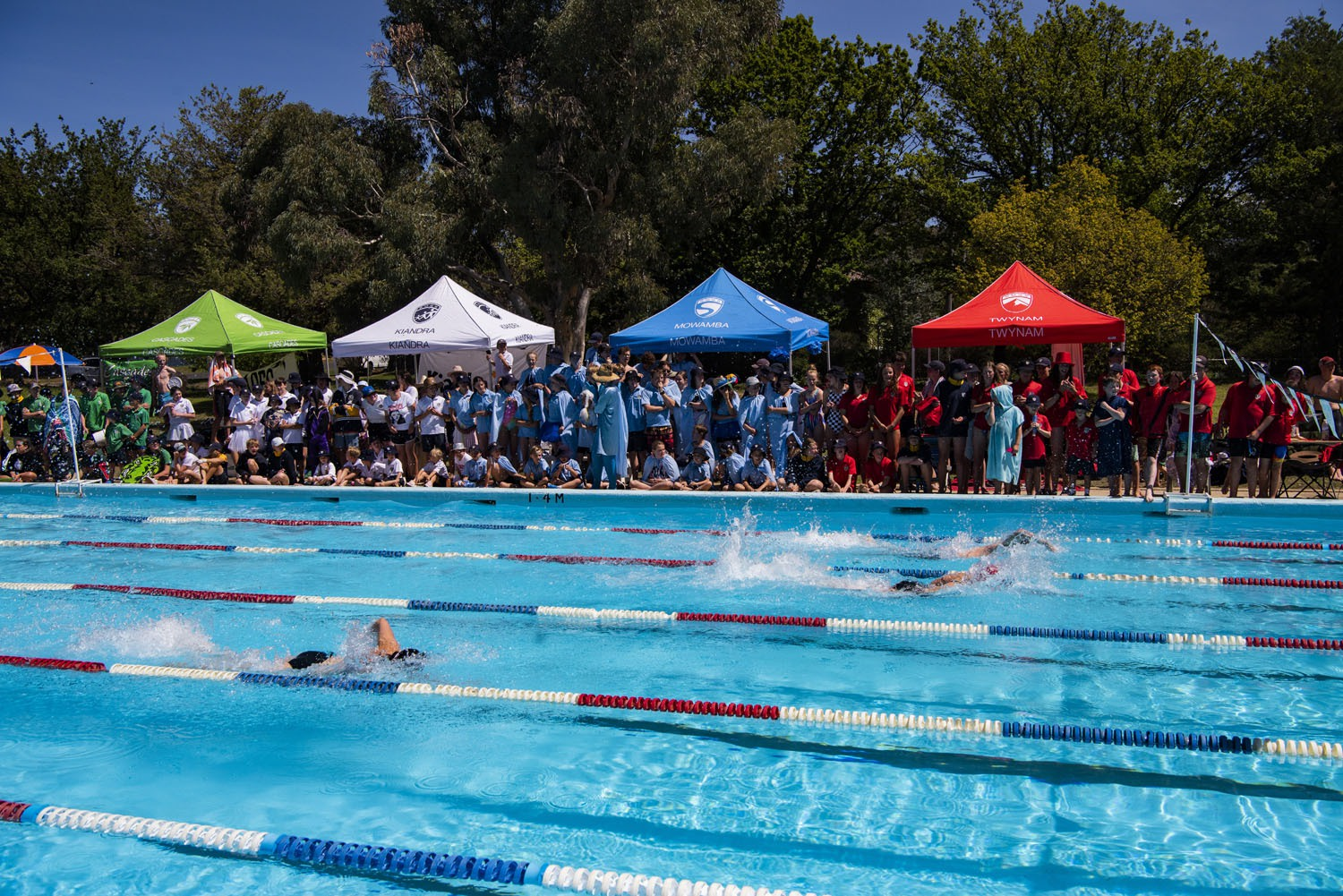 2020_SMGS_SwimCarnival_pool-action_409
