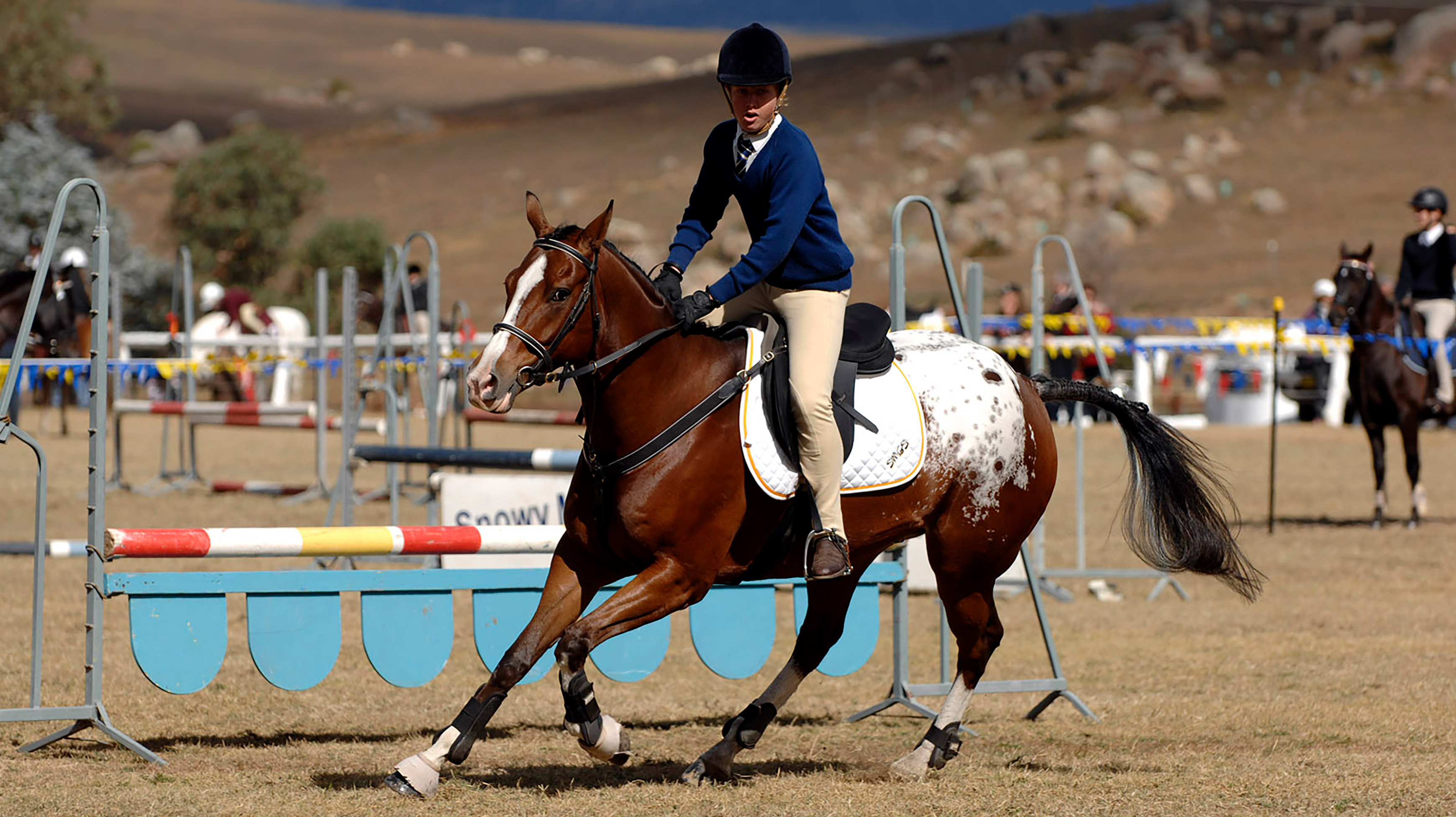 Equestrian Program Snowy Mountains Grammar School