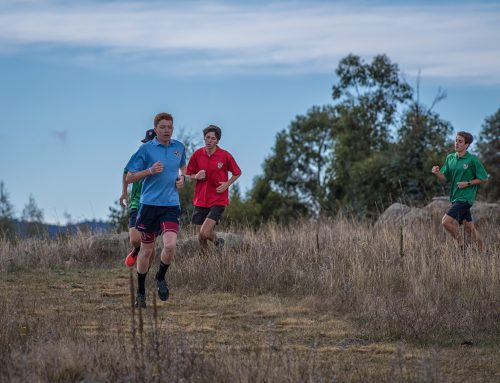 SMGS Cross-Country Carnival – Notes, Quotes, Results and Gallery