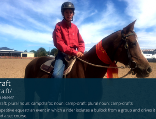 SMGS students participate in campdraft clinic