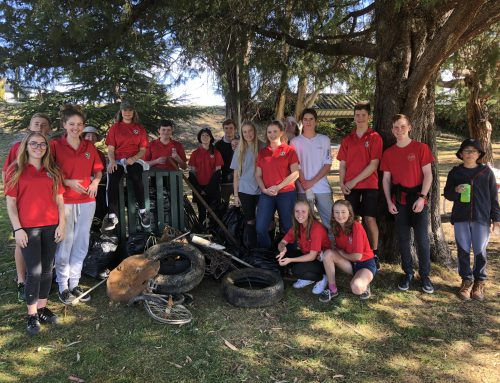 Twynam House Service Day – Lake Jindabyne Foreshore Clean-Up Day