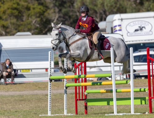 Mackenzie and her horse, Kosciuszko Red, crowned U15 Age Champion for A Grade riders at the PCA NSW State Show Jumping and State Jumping Equestrian Championships