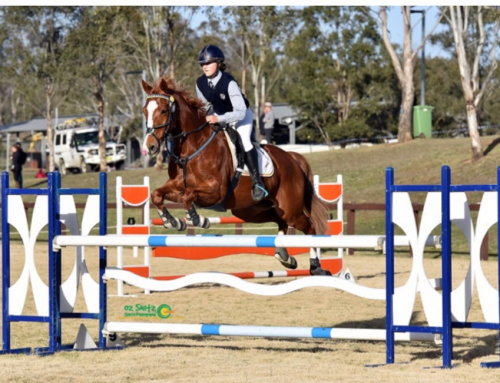 Equestrian NSW Interschool State Championships