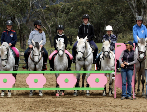 SMGS Equestrian Team Coached by Christan Trainor!