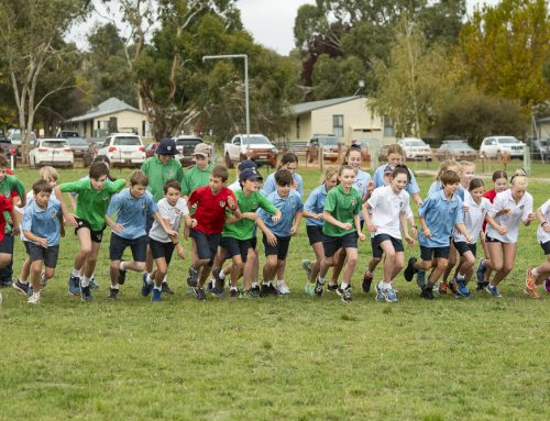 House spirit shines at 10th Annual Cross Country Carnival