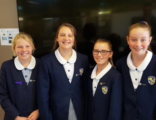 Year 6 Virtual Debate team successful in second round