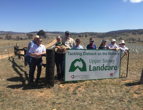 SMGS joins Upper Snowy Landcare Network tour