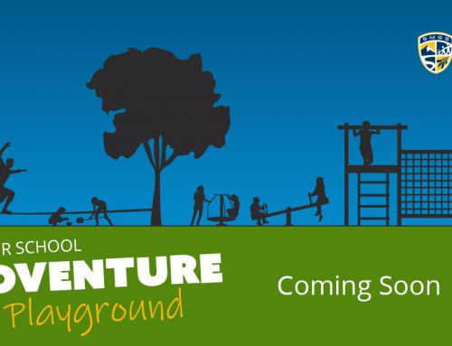 Junior School Adventure Playground ready for Term 1 2020