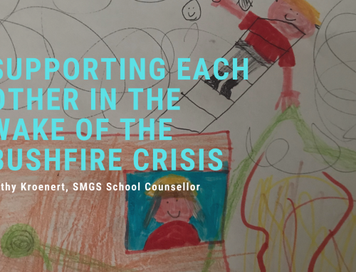 Supporting each other in the wake of the bushfire crisis