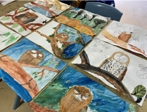 Students embrace Animals in the Hollows theme for 2020 Landcare artwork competition