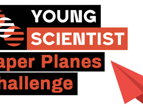 Students take flight in STANSW Young Scientist Paper Plane Competition