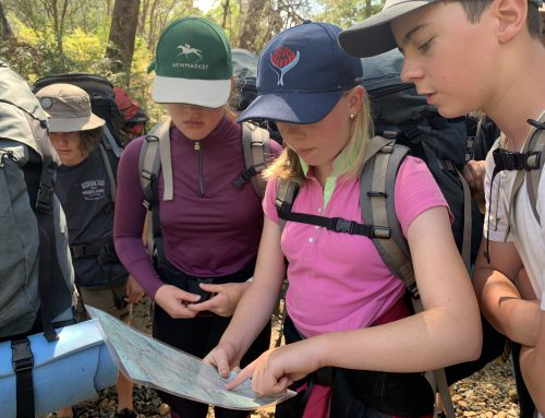 The Importance of Outdoor Education and Curriculum Camps