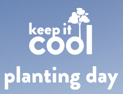 Planting Day – Keep It Cool x Rob Kneller Youth Foundation