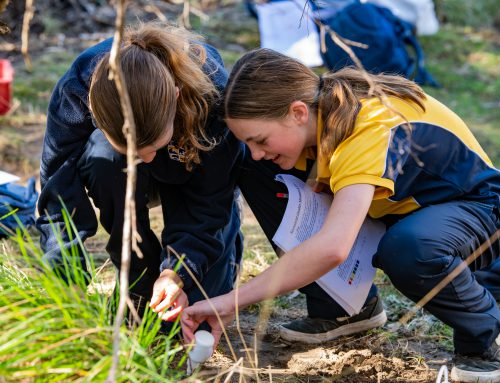 Year 7 Science Students explore water ways in Jindabyne in Cross-Curricular Field Study